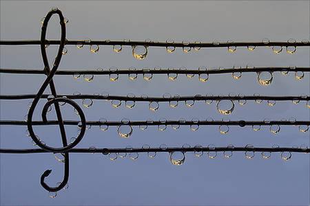 Фото скрипичный ключ из проволоки (© Louise Leydner), добавлено: 21.10.2010 23:11