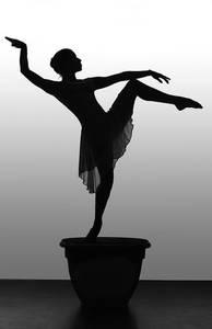 Фото силуэт балерины (© Louise Leydner), добавлено: 21.10.2010 23:53