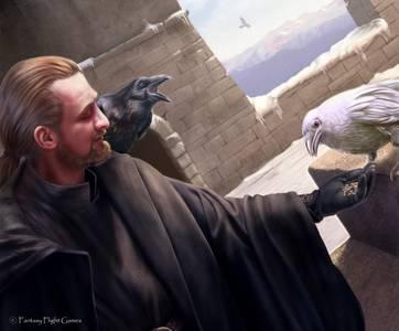 Фото Мужчина с черным вороном на плече кормит зерном белого ворона