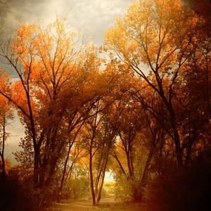 Фото осень (© Louise Leydner), добавлено: 26.10.2010 23:46