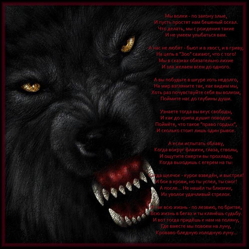 Рисунки волки злые