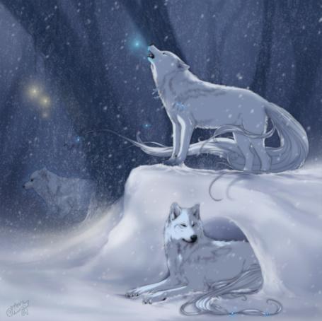 Фото Волки возле норы