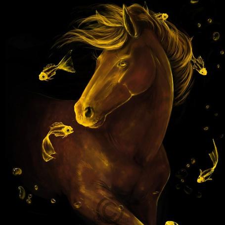 Фото Вокруг лошади плавают золотые рыбки