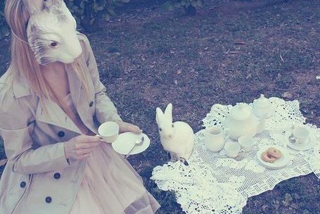 Фото Девушка в маске кролика (© Юки-тян), добавлено: 15.11.2010 19:11