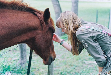 Фото Девушка и лошадь