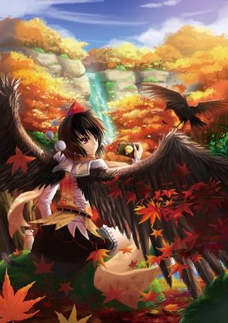 Фото Ангел взлетает высоко вверх, пытаясь запечатлеть на фото все краски уходящей золотой осени