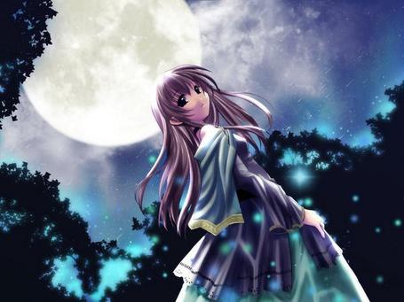 Фото Лунный свет (© Юки-тян), добавлено: 06.12.2010 16:07