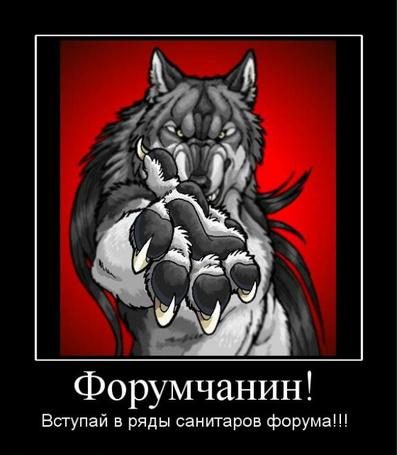 Фото Форумчанин! Вступай в ряды санитаров форума! (© Anatol), добавлено: 29.12.2010 17:23