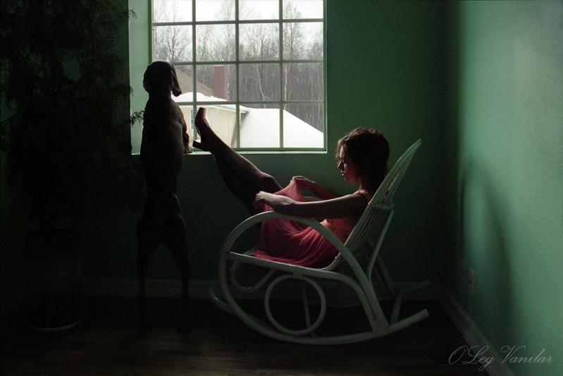 Фото Собака ждлёт хозяина и смотрит в окно (Oleg Valinar)