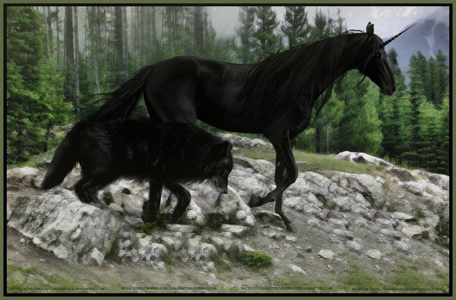 Фото Черный волк и единорог
