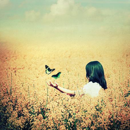 Фото Девушка в поле ловит красивых бабочек (© Штушка), добавлено: 07.01.2011 15:47