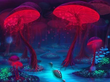 Фото Лес из огромных грибов (© Штушка), добавлено: 07.01.2011 19:02