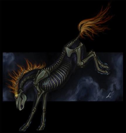Фото Скелет огненной лошади