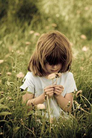 Фото Девочка нюхает одуванчики
