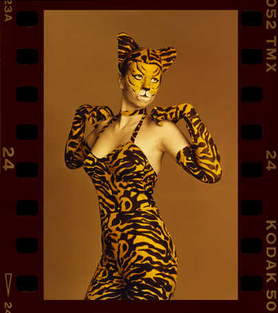 Фото Девушка-тигр (© Юки-тян), добавлено: 17.01.2011 14:17
