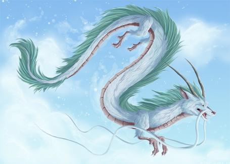 Фото Небесный дракон