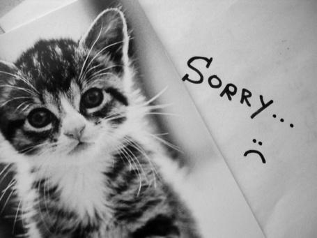Фото Sorry .... :(