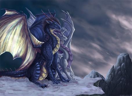 Фото Драконья любовь (© Штушка), добавлено: 25.01.2011 00:34