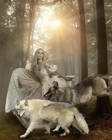 Фото Девушка с волками