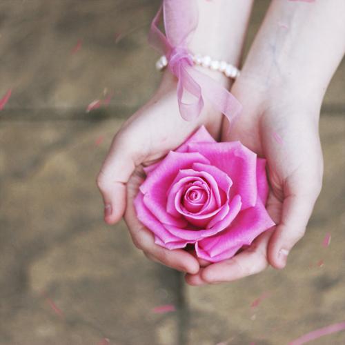 Фото красивый цветок в руке