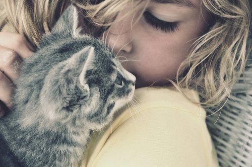 Фото Девочка с пепельным котиком