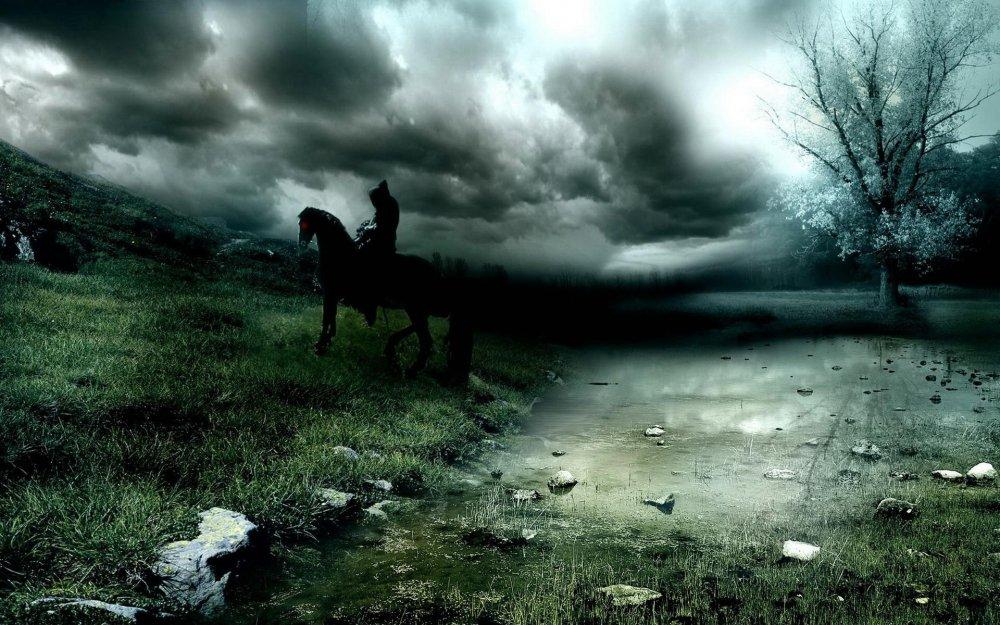 Фото всадник на лошади