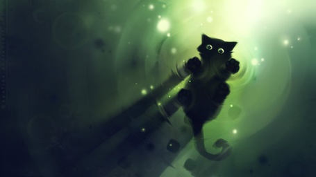 Фото котёнок на воде (© Флориссия), добавлено: 18.02.2011 15:29