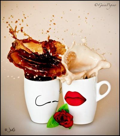 Фото Чашка с молоком и чёрным кофе