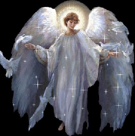 Фото Девушка - ангел с голубями...