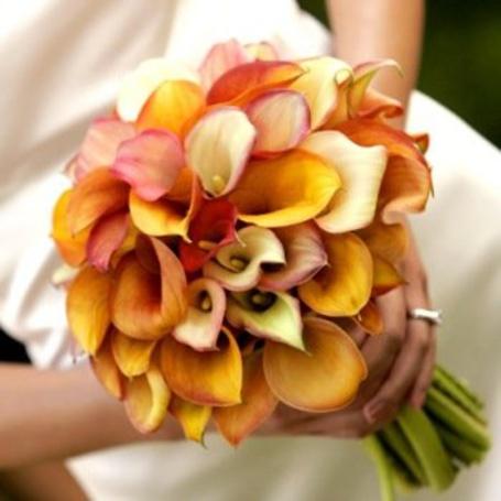 Фото Невеста с красивым букетом (© ColniwKo), добавлено: 24.02.2011 12:56