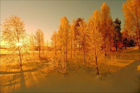 Фото Зама как сказка (© Штушка), добавлено: 25.02.2011 17:11