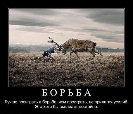 Фото Борьба - лучше проиграть в борьбе, чем не прилагая усилий. Это хотя бы выглядит достойно (© Флориссия), добавлено: 28.02.2011 20:51