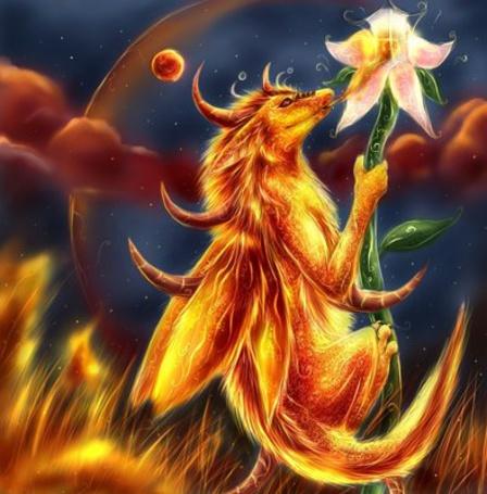 Фото Огненный дракон сидит на цветке (© ColniwKo), добавлено: 05.02.2011 17:31