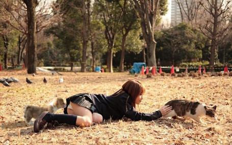 Фото японка отдыхает в парке со своими животными