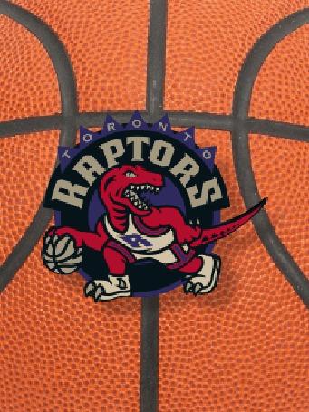 Фото Эмблема баскетбольной команды 'raptors'