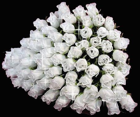 Фото Обалденный букет белых роз