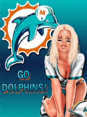 Фото Девушка из группы поддержки команды 'dolphins'