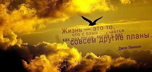 Тэги красивые небо птицы фразы