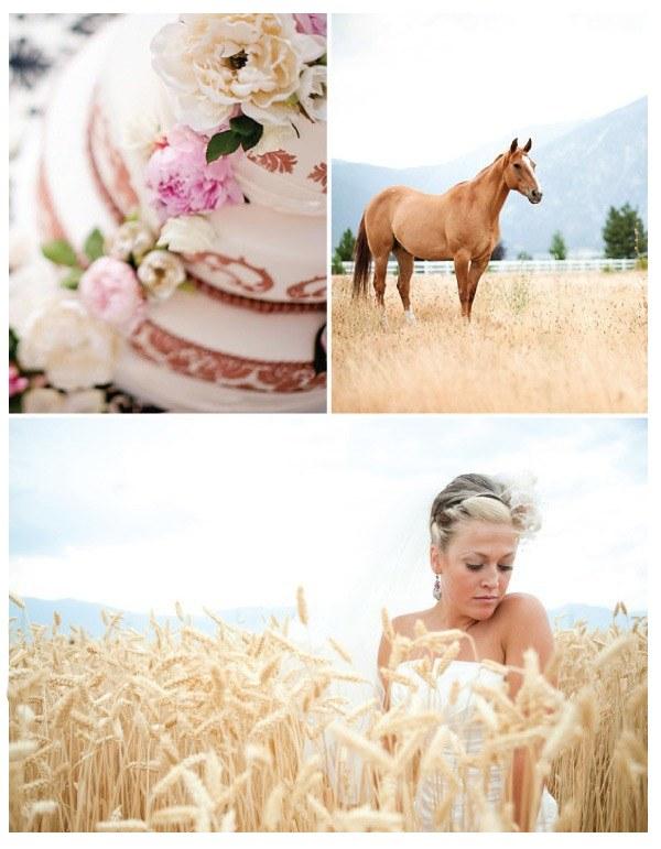 Фото Торт,конь в поле,девушка в поле колосков