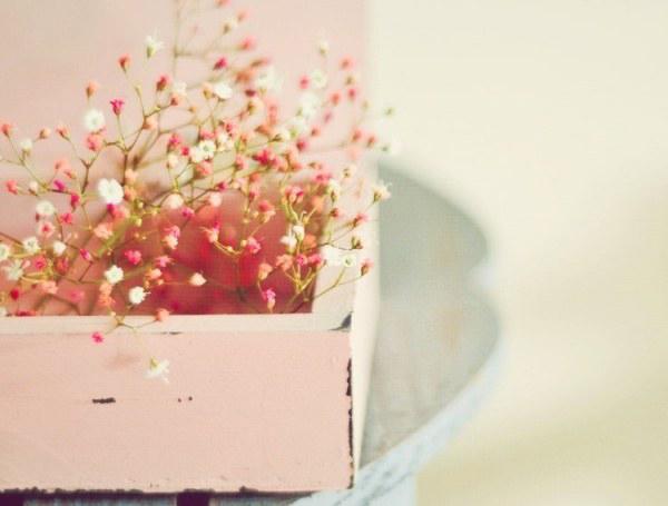Фото нежные маленькие цветочки