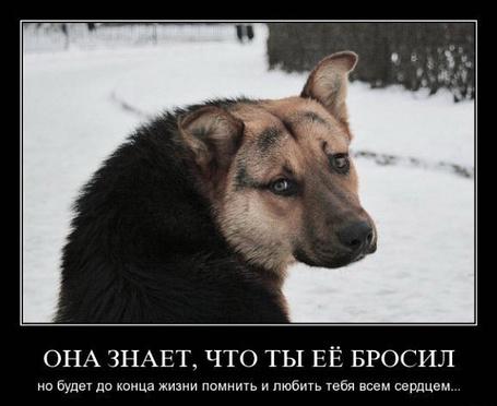 ���� ��� �����, ��� �� � ������. �� ����� �� ����� ����� ������� � ������ ���� ���� �������. (� ���������), ���������: 01.03.2011 10:32