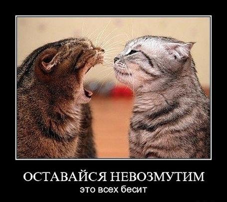 ���� ��������� ������������ ��� ���� ����� (� ���������), ���������: 01.03.2011 10:33