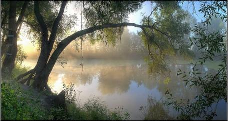 Фото Утренний туман на озере (© Штушка), добавлено: 01.03.2011 21:08
