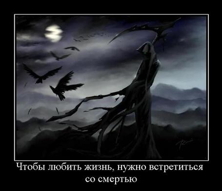 Фото что бы любить жизнь, нужно встретиться со смертью