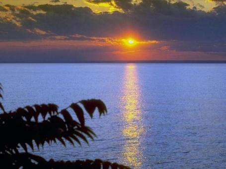 Фото Красивый закат на море (© Volkodavsha), добавлено: 04.03.2011 04:02