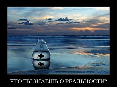 Фото что ты знаешь о реальности?