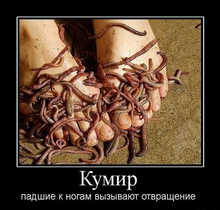 Фото Кумир: падшие к ногам вызывают отвращение (© Шепот_дождя), добавлено: 07.03.2011 00:37