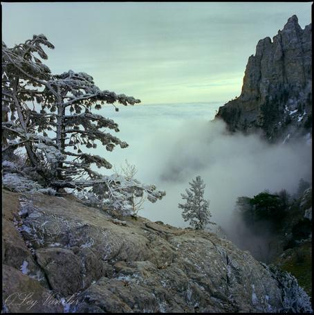 Фото 'Идти навстречу' - Oleg Vanilar (© Юки-тян), добавлено: 09.03.2011 11:45