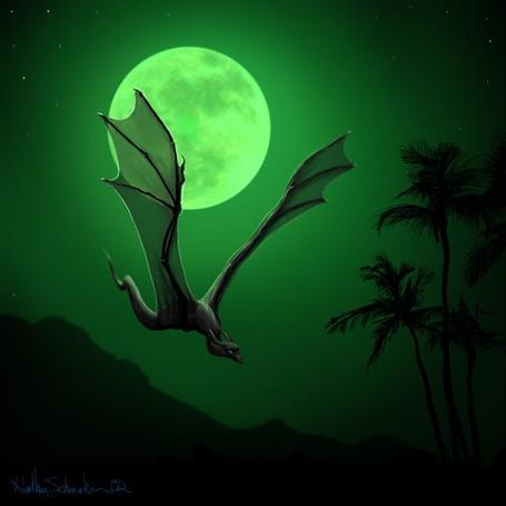 Фото полёт дракона (© Флориссия), добавлено: 09.03.2011 13:44