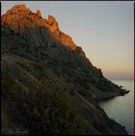 Фото 'Cвита Короля' - Oleg Vanilar (© Юки-тян), добавлено: 10.03.2011 16:34